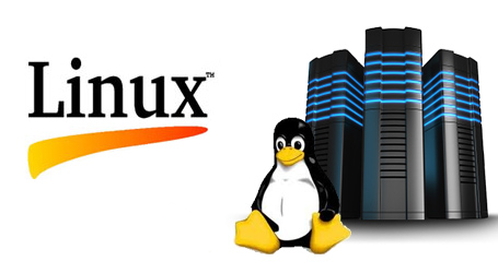 Linux Hosting Services